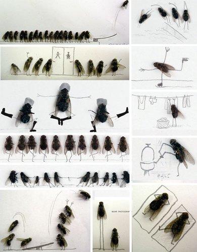 十大昆虫艺术作品:邪恶精灵和苍蝇喜剧生活