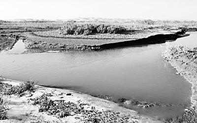 罗布泊地区古老的若羌河仍在顽强地流淌着,远处依稀可见浩瀚无边的沙漠。新华社发