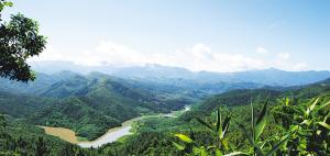 海南发展碳汇林业具有得天独厚的优势,图为郁郁葱葱的白沙黎族自治县南妹岭。 本报记者 苏晓杰 摄