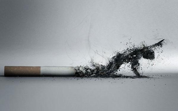 每天一包烟身体惊人变化:大量DNA不可逆转变异