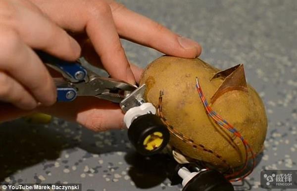 全球第一个自动驾驶土豆诞生:就是有点慢