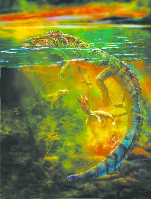 龙类——朝阳喜水龙化石.研究结果显示,这是双孔类中产后亲代抚