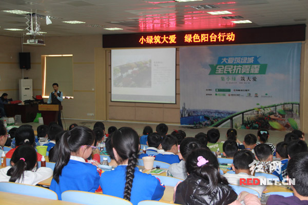 """""""小绿筑大爱,绿色阳台行动""""活动在枫树山大桥小学启动,迎接第46个世界地球日。"""