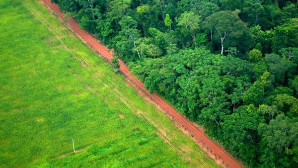 巴西新气候目标缺乏说服力 - 资讯 - 环境生态网
