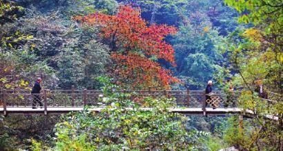 三江生态旅游区――距离成都最近的彩林