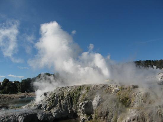 新西兰的北岛温泉城罗托鲁瓦